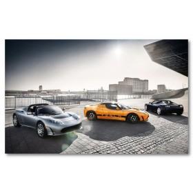 Αφίσα (αυτοκίνητο, Tesla Roadster, μαύρο, λευκό, άσπρο)